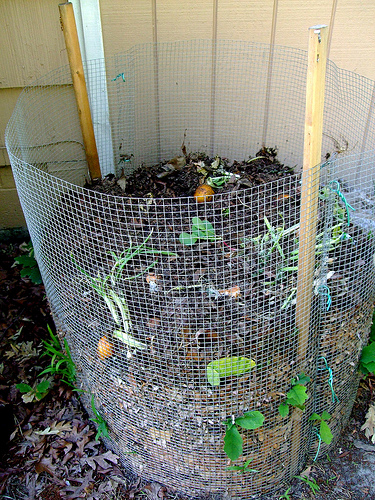 Simple Compost